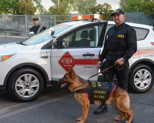 CSI-Armed_Patrol1